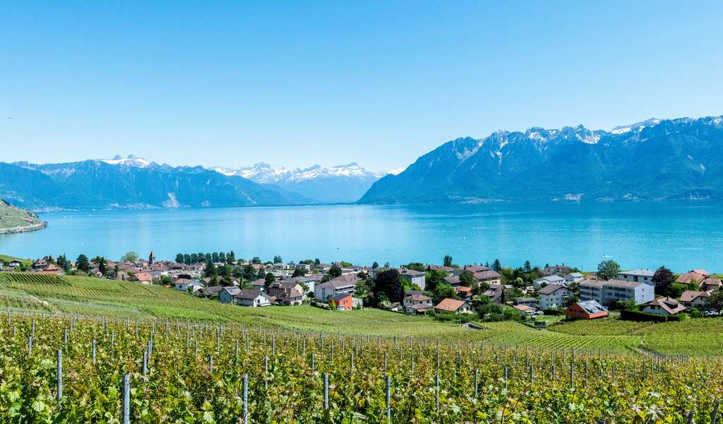 23 Best Things to do in Montreux, Switzerland